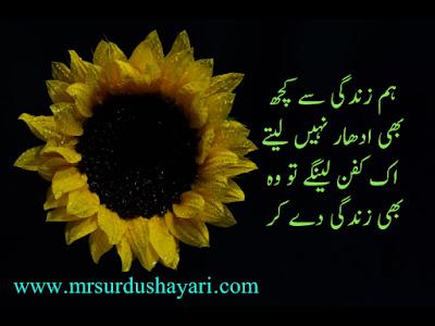 Beautiful Urdu Shayari images