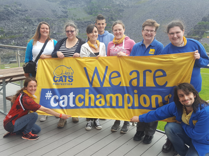 Cats protection cat champions