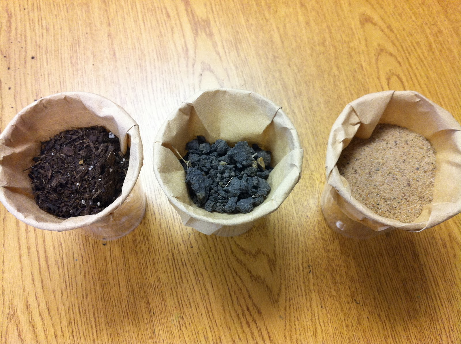 Fun In First Grade Natural Resources