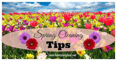 kimmi's dairyland: spring cleaning tips