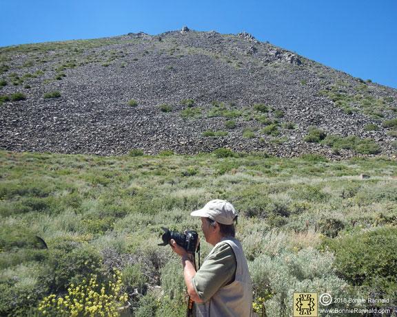 Photographer Bonnie Rannald, Conway Summit, California