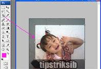 cara-memotong-crop-gambar-menggunakan-photoshop