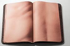 the skin book 8
