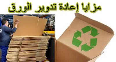 مزايا إعادة تدوير الورق