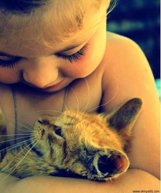 Image bébé fille avec chat
