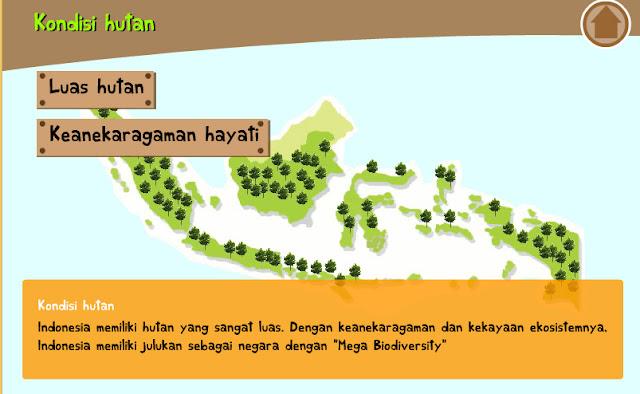 Kondisi hutan di Indonesia