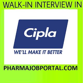 Cipla Limited Walk  In  Interview For B.Pharm, M.Pharm, B.Sc, MBA-Apply Online