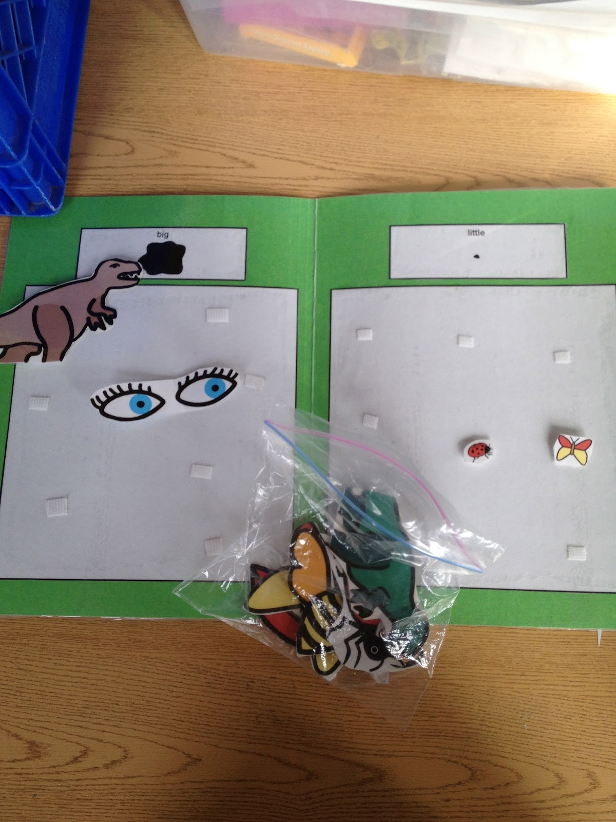 Autism Tank Work Task Tuesday Sorting By Shape And Size