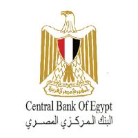 وظائف البنك المركزي المصري | وظيفة مدير مصممين