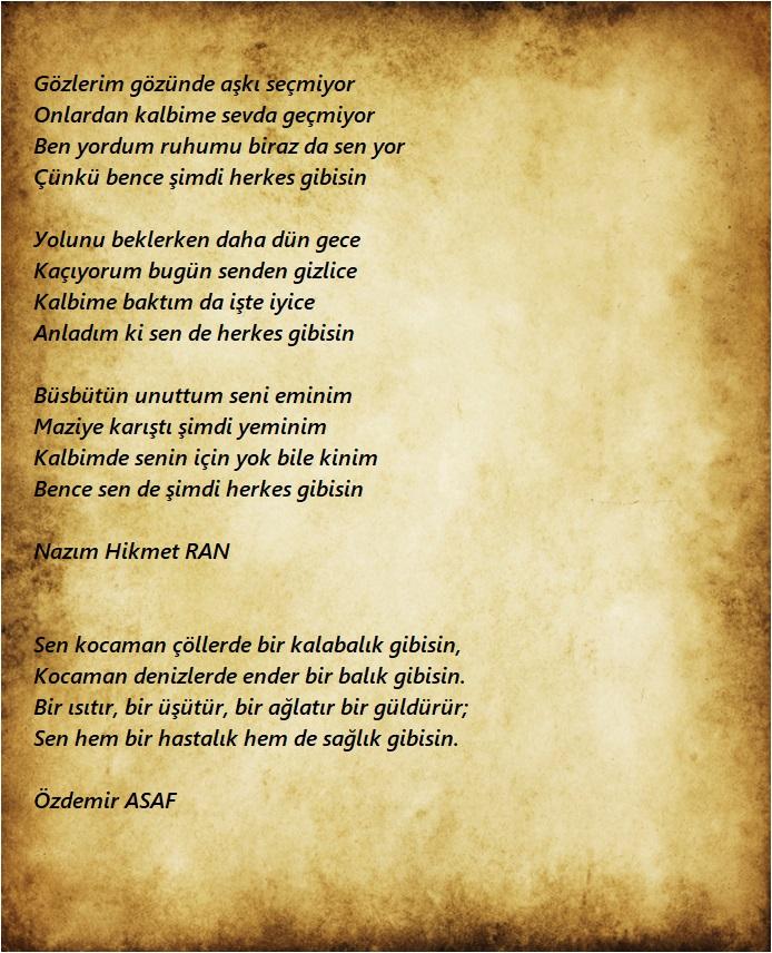 en güzel aşk şiirleri