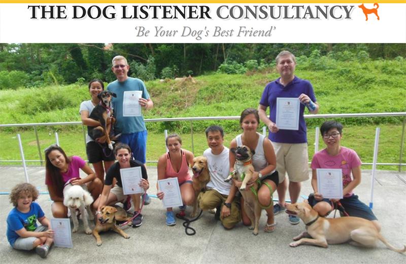 dog whisperer in Singapore
