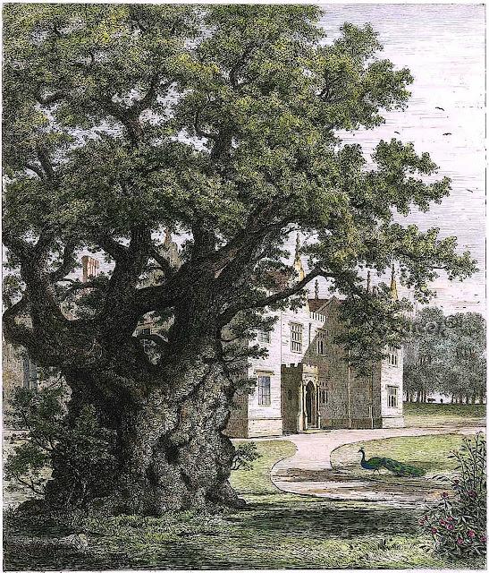 Jacob George Strutt 1826