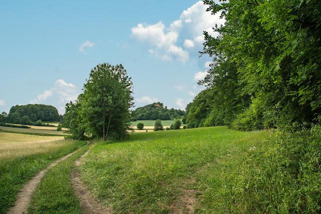 Königstein Rundwanderweg Nr. 18  Steinberg-Rundweg  Amberg-Sulzbacher Land 03