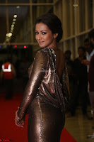 Actress Catherine Tresa in Golden Skin Tight Backless Gown at Gautam Nanda music launchi ~ Exclusive Celebrities Galleries 037.JPG
