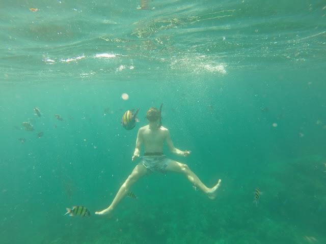snorkelling maya bay beach