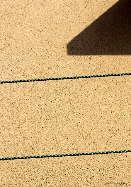 Minimalist Photo of Parallel clotheslines against a textured Indian wall.