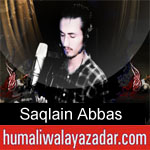 https://www.humaliwalyazadar.com/2018/09/saqlain-abbas-nohay-2019.html
