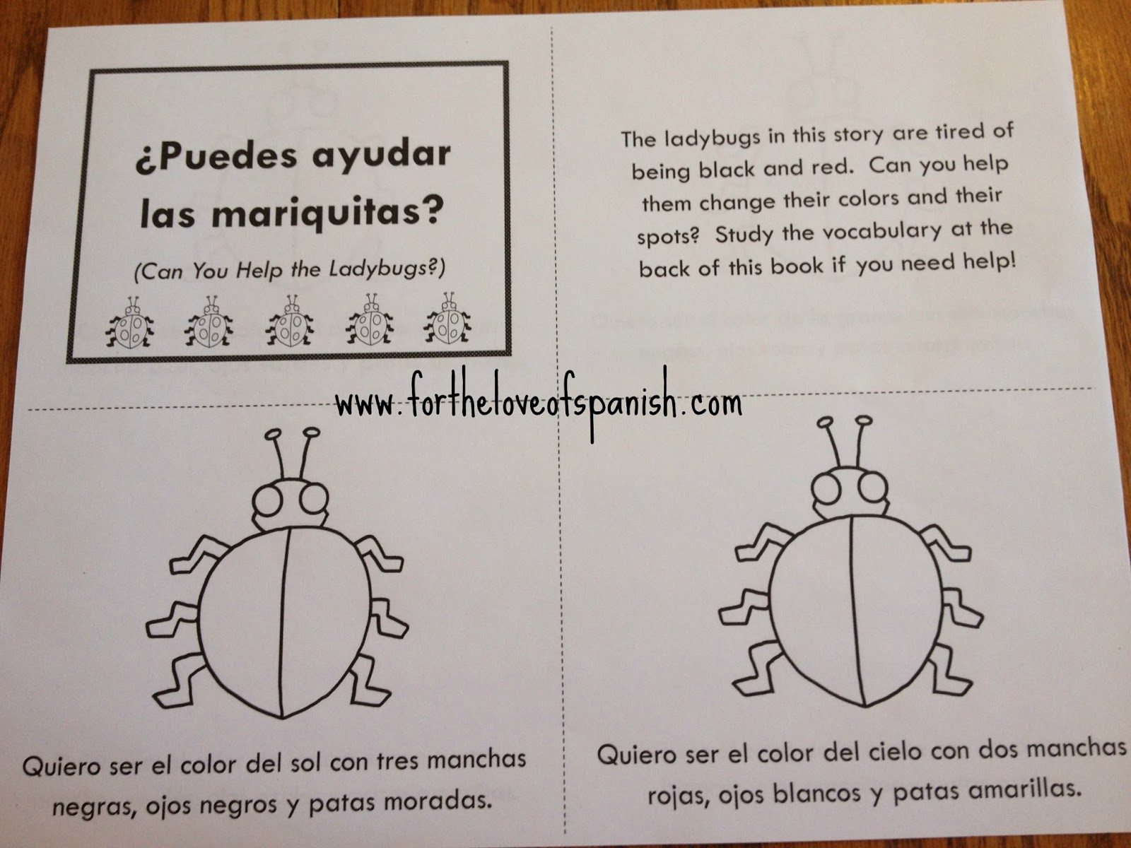 For The Love Of Spanish Learn Spanish With Ladybugs Can You Help The Ladybugs