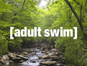 Adult Swim Roku Channel