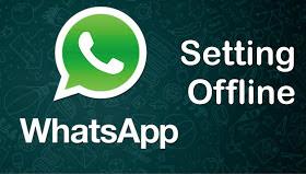 WhatsApp, cara terlihat offline di whatsApp