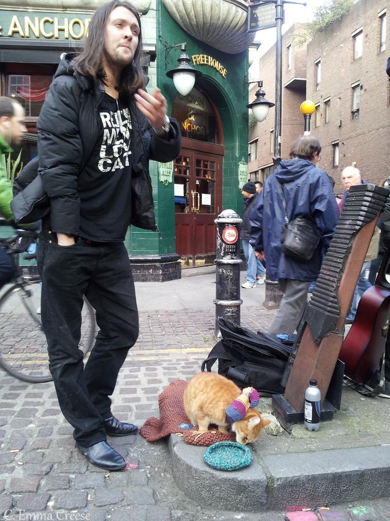 Street Cat Named Bob Film Newport Isle Of Wight