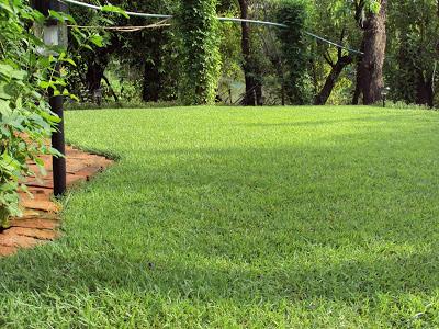 วิธีปูสนามหญ้าหน้าบ้าน