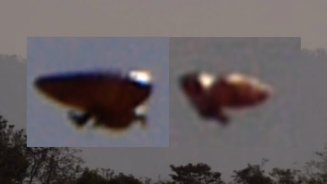 Is this a UFO or a shape shifting Alien which was caught on camera.