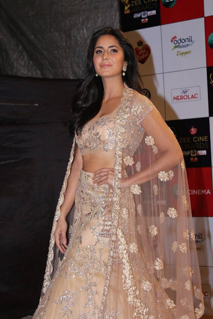 Katrina Kaif Stills At Zee Cine Awards 2018