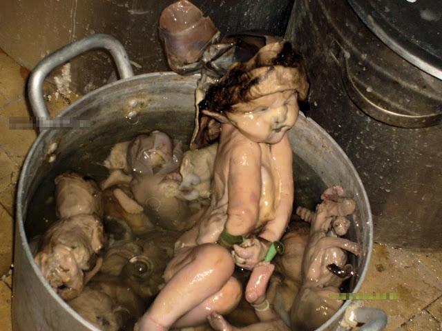 Hong Kong Reports   Mainland Chinese Eating Infants