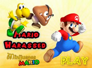 Mario Harassed