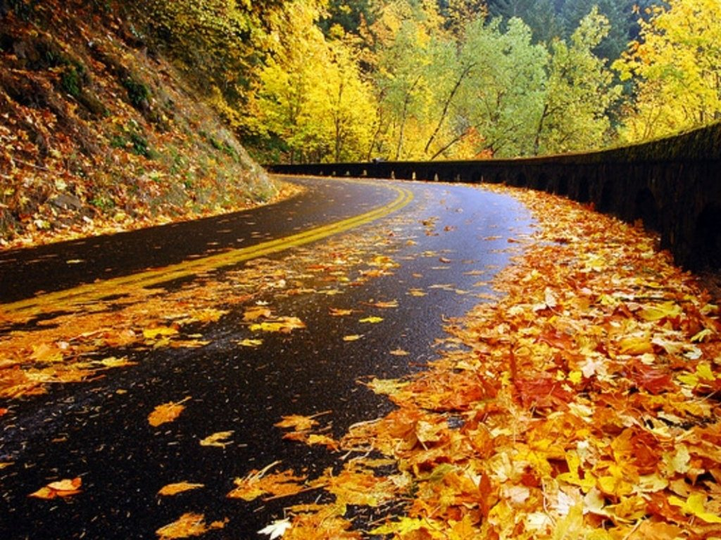 High Resolution Photo Autumn Season Wallpapers 5