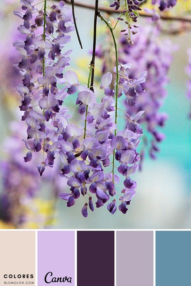 paletas_de_colores_mes_de_agosto_5