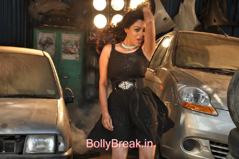 Anjali Rao Photo Gallery, Anjali Rao Hot HD allpapers 2000 Crores Black Money Movie