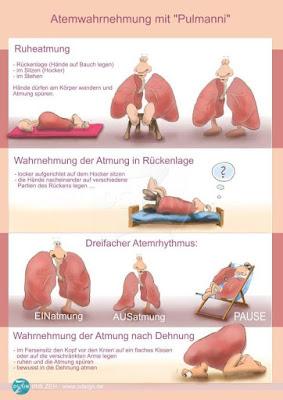 humorvoller-Lungen-und-Atmungsratgeber-mit-Pulmanni-und-Pulmoni