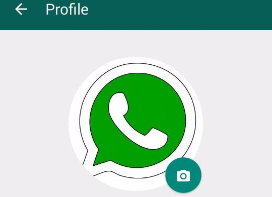Best Dp For Whatsapp