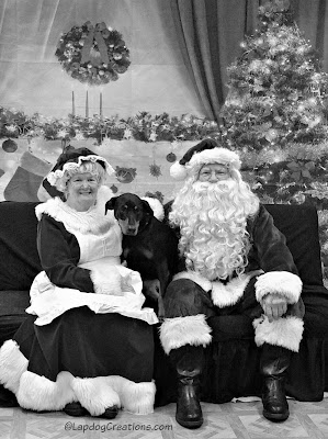 doberman mix puppy with Santa and Mrs Claus