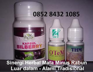 Obat mata minus rabun Bilberry Hpai suplemen alami herbal tradisional