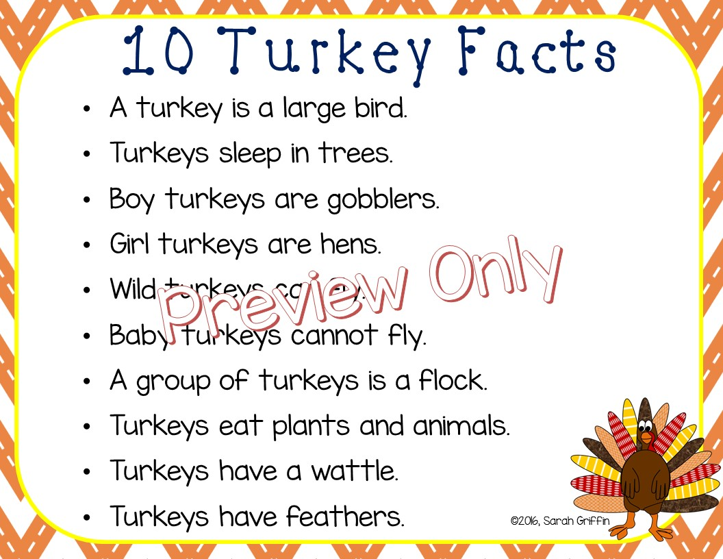 Daughters And Kindergarten Ten Turkey Facts For Kids
