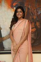 Eesha Rebba in beautiful peach saree at Darshakudu pre release ~  Exclusive Celebrities Galleries 052.JPG