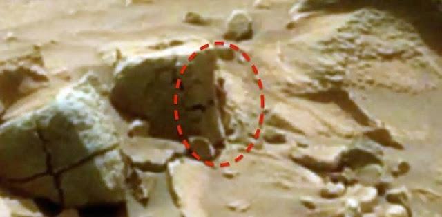 جسم غريب يشبه الإنسان يستند على صخرة على سطح المريخ! المفاجئة الكبيرة باكتشاف ما هو هذا الجسم الغريب .. شاهدوا صورته عن قرب وبوضوح