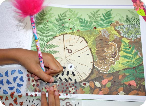 Papillons et autres petites bêtes - Livre de décalcomanies - éditions Usborne