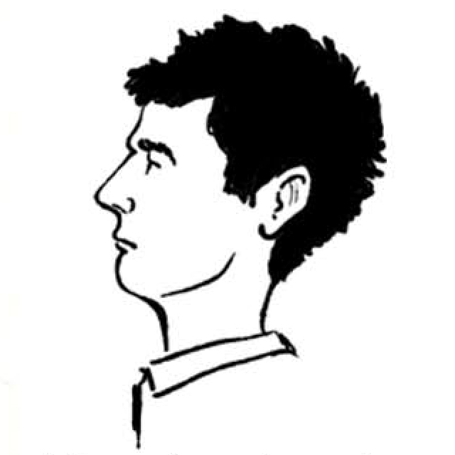 Guido Sender / Dibujos