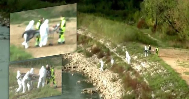 Mysterious Footage Of A 'Merman' Being Pulled From A River In Poland – Real Or Hoax?
