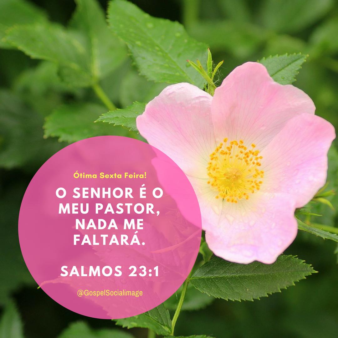 Imagem Boa Sexta-Feira - Salmos 23