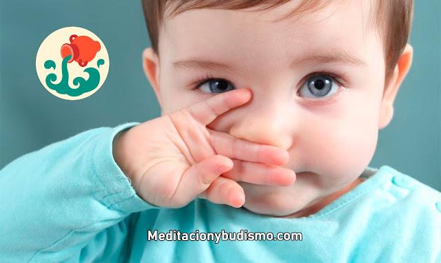 Todo sobre los bebés ACUARIO