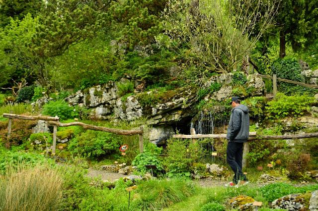 Visite des Jardins botaniques de Genève