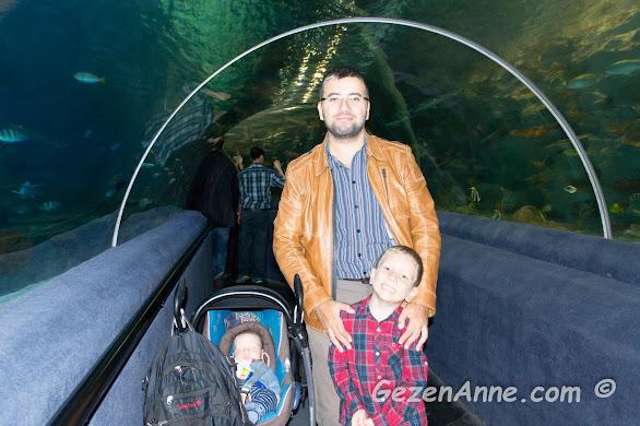 baba ve oğulları Sea Life su altı tünelinde