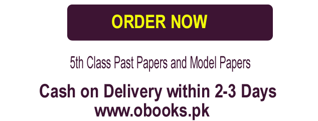 5th Class Old Past Paper 2019 Model Paper (Class V) Download