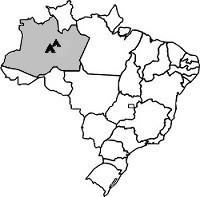 Brasil-Manaus-200