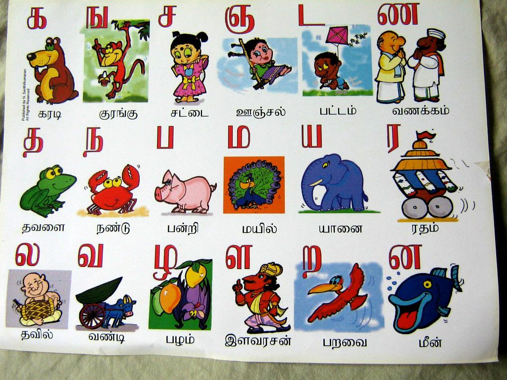 Image Of Tamil Language Alphabet Chart Tamil Alphabet Pronunciation And Languagetamil Alphabet